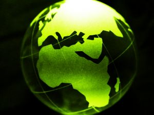 Yellow globe